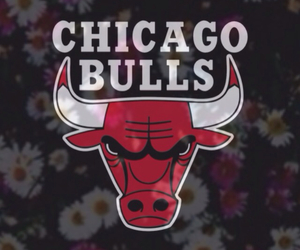 chicago bulls, Basketball, and red image