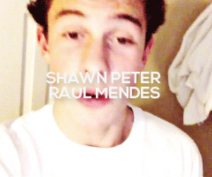 gif, shawn mendes, and magcon image