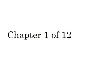chapter, february, and year image