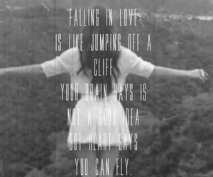 fly, heart, and quote image