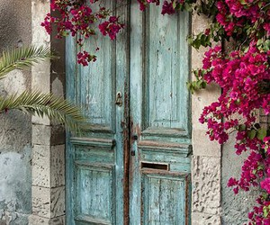 flowers, door, and vintage image