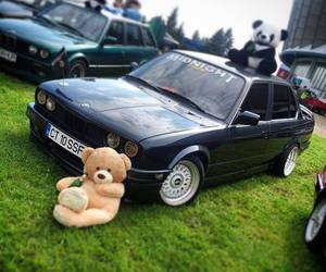 bear, bmw, and e30 image