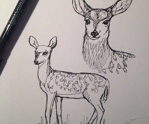 drawing, deer, and art image