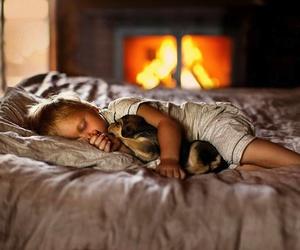 dog, puppy, and sleep image