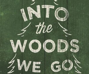 go, woods, and pine image
