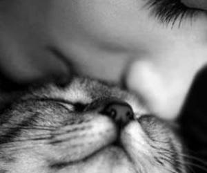 cat, kiss, and black and white image