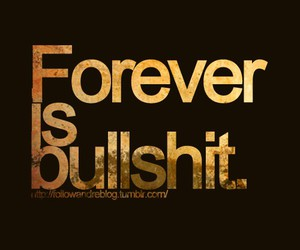 forever, bullshit, and quote image