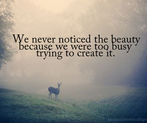 beauty, quotes, and create image