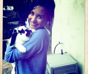 demi lovato, demi, and bunny image