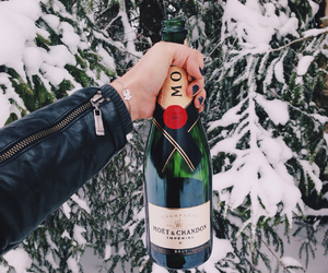 champagne, tous, and winter image