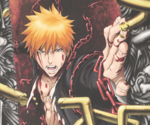 bleach, Ichigo, and anime image