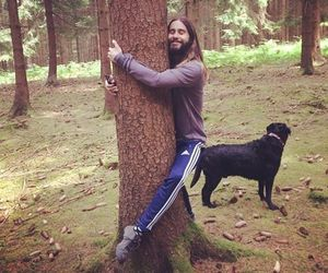 jared leto, tree, and 30 seconds to mars image