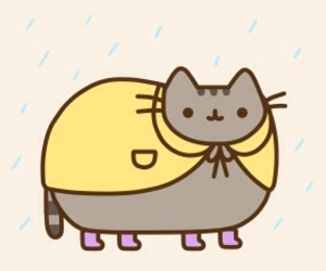 cat, raincoat, and april showers image