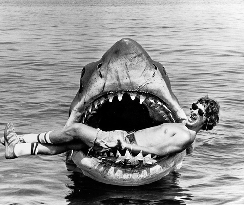 shark, jaw, and black and white image