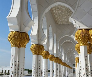 abu dhabi, flowers, and gold image