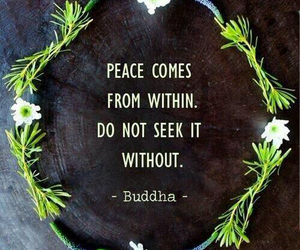 quotes, peace, and Buddha image