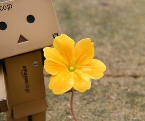 flowers, Amazon, and danbo image