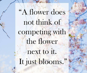 quotes, flowers, and bloom image