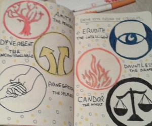 amity, condor, and wreck this journal image