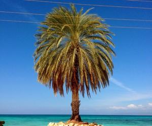 Dominican Republic image