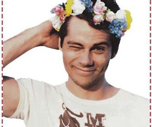 flower crown, hippy, and roses image