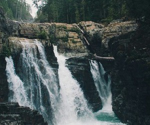 photography, waterfalls, and forest image