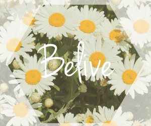 background, flowers, and texts image