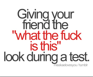 lol, tests, and friends image