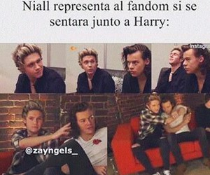 niall horan, Harry Styles, and fandom image