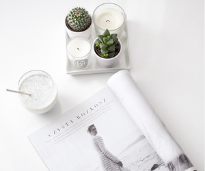 white, magazine, and plants image