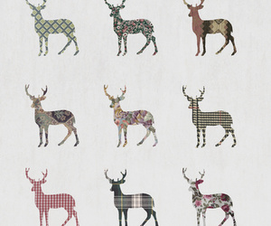 colourful, deer, and fashion image