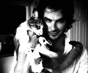 ian somerhalder, cat, and ian image