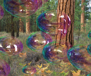 amazing, bubbles, and nature image