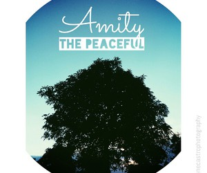 amity, peace, and insurgent image