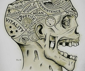 brain, Died, and system image