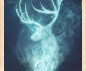 deer, harry potter, and expecto patronum image