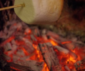 food, hunger, and marshmellows image