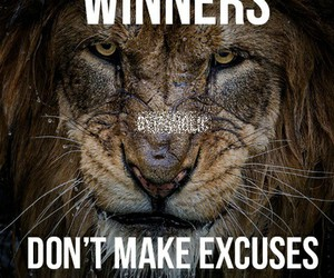 excuses, gym, and lion image