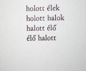 magyar and text image