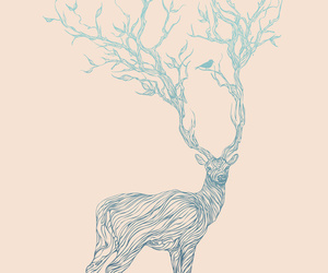 deer, art, and drawing image