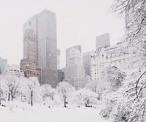 city, white, and snow image