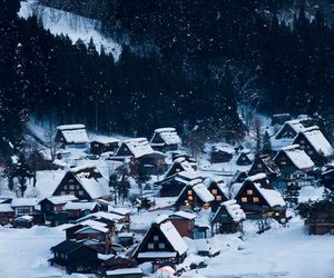 Houses, lights, and winter image