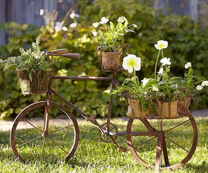 flowers, bicycle, and garden image