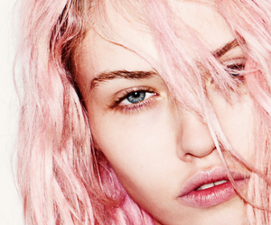 model, pink hair, and charlotte free image