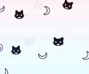 wallpaper, background, and cats image