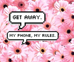 wallpaper, flowers, and phone image