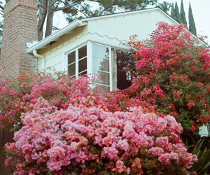 house and flowers image