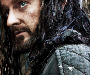 dwarf, fantasy, and thorin image