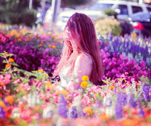 beautyfull, color, and love image