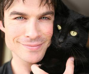 black, cat, and ian image